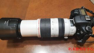 キャノン7D 100-400mm